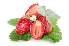 Free Fresh Strawberry Royalty Free Stock Photography - 20838217