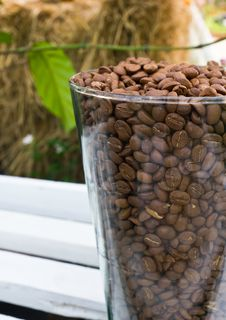 Brown Coffe Beans Royalty Free Stock Photo