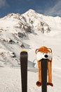 Free Snow Fun Stock Image - 20843401