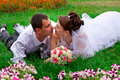 Free Happy Bride And Groom Royalty Free Stock Photography - 20843867