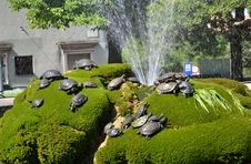 Free Fountain With Water Turtles Royalty Free Stock Image - 20840686