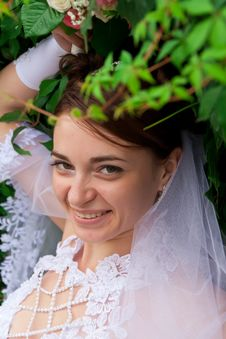Free Portrait Of A Beautiful Bride Royalty Free Stock Image - 20844046