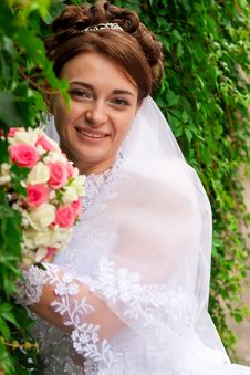Free Portrait Of A Beautiful Bride Stock Photos - 20844073