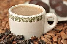 Free Chocolate Royalty Free Stock Photo - 20844825
