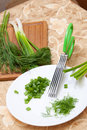 Free Culinary Scissors For Chopping Greens Stock Images - 20853694