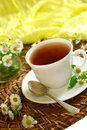 Free Cup Of Tea And Chamomiles On Wooden Royalty Free Stock Photos - 20854198