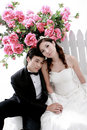Free Portrait Of Young Bride And Groom Royalty Free Stock Photo - 20855875