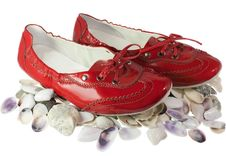 Free Red Lady Ballet Flat Shoes And Seashells Isolated Stock Photos - 20850533