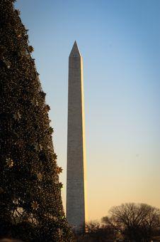 Free National Christmas Tree And Washington Monument Royalty Free Stock Photo - 20851665