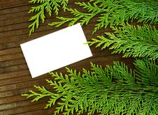 Free Blank Card And Branch Of Fir- Tree On Wooden Stock Images - 20854114