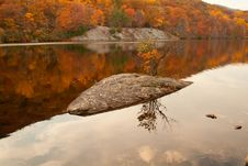 Beautiful Fall Colors In The Forest Lake. Stock Images