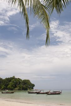 Free Patong Beach, Phuket Stock Image - 20857091