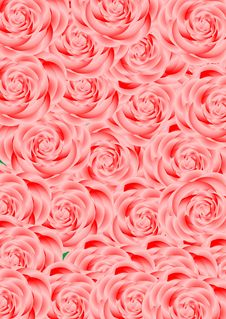 Free One-off Roses. Royalty Free Stock Photos - 20858098