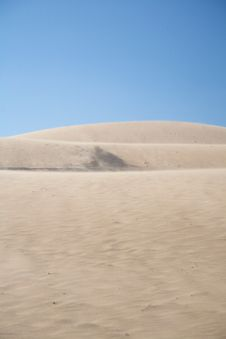 Free Dune With Wind Storm Royalty Free Stock Photos - 20858158