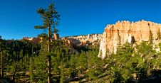 Free Hoodoos In The Valley Of The Pines Royalty Free Stock Image - 20858546