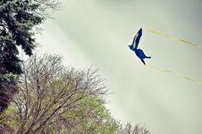 Free Kite Stock Images - 20859054