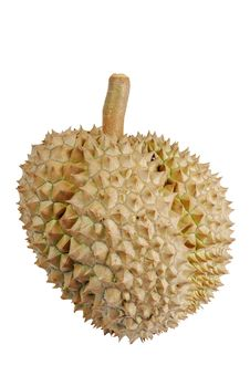 Free Durian Royalty Free Stock Image - 20859146