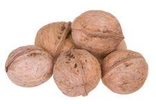 Free Walnuts Royalty Free Stock Photos - 20859698