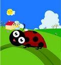 Free Ladybug On A Leaf Stock Photography - 20866802