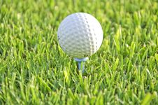 Free Ball Of Golf On A Tee. Stock Photo - 20860360