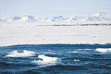 Free Arctic Winter Landscape - Sea, Glacier, Mountains Stock Photo - 20863500