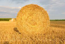 Free Hay Bale. Stock Image - 20864181