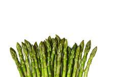 Fresh Green Asparagus Tips Royalty Free Stock Photography
