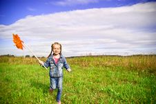 Free Girl On Grass In Summer  Day Royalty Free Stock Images - 20865039