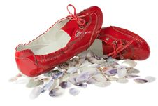 Free Red Lady Ballet Flat Shoes And Seashells Isolated Royalty Free Stock Images - 20865439
