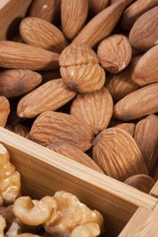 Free Nuts Almond Stock Images - 20865874