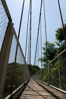 Free Cable Suspension Bridge Royalty Free Stock Photography - 20866107
