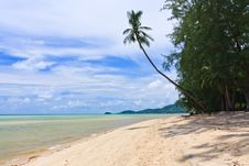 Free Beach  With Palm Trees On Samui Island Royalty Free Stock Images - 20867879