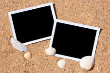 Sea Shells With Photos On Sand. Royalty Free Stock Photo