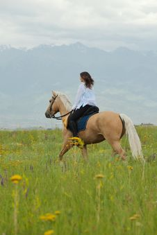 Free On The Horse Royalty Free Stock Images - 20868729