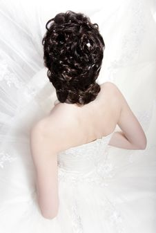 Free Hairdress Of The Bride Stock Photos - 20868933