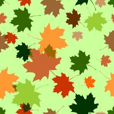 Seamless Pattern With Maple Foliage Stock Images