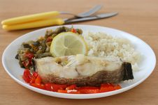 Free Boiled Fish With Rice And Vegetables Stock Images - 20869664