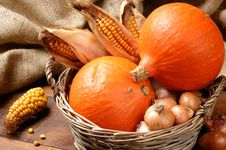 Free Pumpkins And Corn Stock Photos - 20870693
