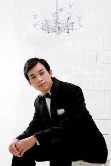 Free Portrait Of Handsome Bridegroom Stock Photos - 20871343
