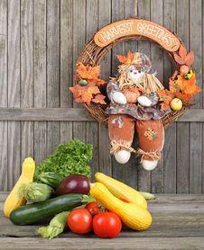 Harvest Vegetables Stock Photography
