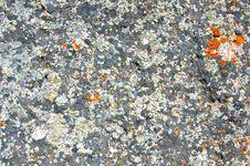 Free Grey Stone Stock Photography - 20874922