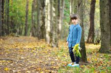 Free Adorable Child Girl Walks In Autumn Forest Stock Photography - 20876892