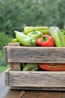 Free Peppers In A Box Royalty Free Stock Photography - 20877567