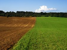 Free Green And Brown Field Royalty Free Stock Photography - 20882327