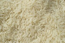 Free Rice Stock Photo - 20883650