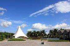 Free Coconut Scene Stock Photography - 20885662