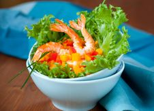 Free Shrimp Salad Royalty Free Stock Photos - 20886908