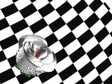 Free 3D Rose Bud Over Chess Background Royalty Free Stock Photos - 20890758