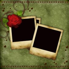 Vintage Card With Red  Rose Stock Photography
