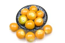 Free Physallis Or Cape Gooseberries Stock Images - 20892054
